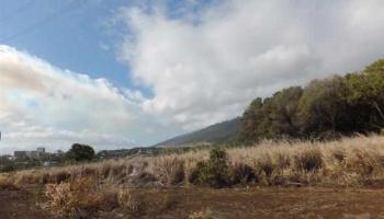 2011 Puuohala Rd 52 Wailuku, Hi 96793 vacant land - photo 4 of 6