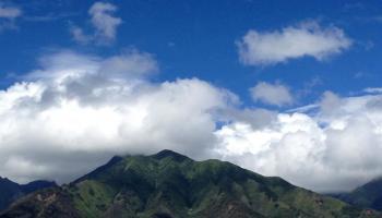 202  Alake St Maui Lani, Kahului home - photo 3 of 10
