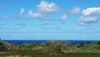 22 Papapa Pl 250 Maunaloa, Hi 96770-0000 vacant land - photo 1 of 10