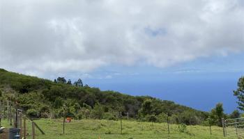 2239 Upper Kanaio Rd  Kula, Hi 96793 vacant land - photo 1 of 2