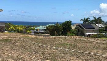 24 One Kea Pl  Wailuku, Hi 96793 vacant land - photo 1 of 15