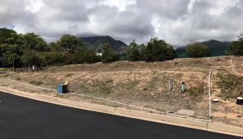 24 One Kea Pl  Wailuku, Hi 96793 vacant land - photo 4 of 15