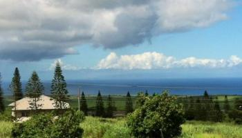 Lot 96  Hao Keehi Place ,  home - photo 1 of 19