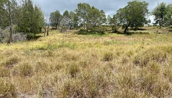 2533 Lower Kula Rd 1 Kula, Hi 96790 vacant land - photo 4 of 8