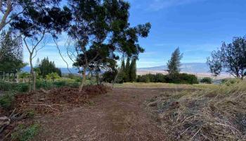 2584 Kamaile St Lot 143 Wailuku, Hi  vacant land - photo 1 of 4