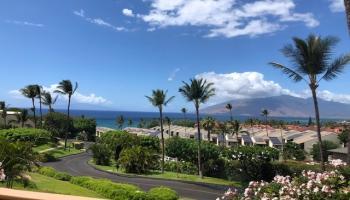 Maui Kamaole condo # L201, Kihei, Hawaii - photo 1 of 30