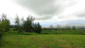303  Naalae Rd , Kula/Ulupalakua/Kanaio home - photo 1 of 1