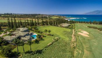 238  Keoawa St Kapalua,  home - photo 1 of 22