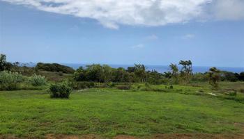 32 Honokala Rd Haiku, Hi 96708 vacant land - photo 1 of 7