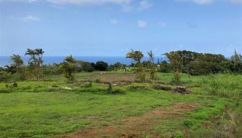 32 Honokala Rd Haiku, Hi 96708 vacant land - photo 3 of 7