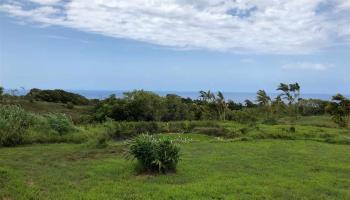 32 Honokala Rd Haiku, Hi 96708 vacant land - photo 5 of 7
