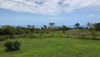 32 Honokala Rd Haiku, Hi 96708 vacant land - photo 6 of 7