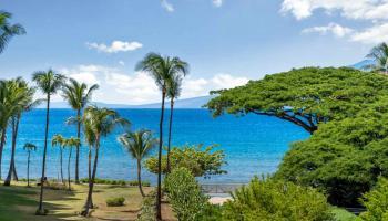 Kaanapali Shores condo # 251, Lahaina, Hawaii - photo 1 of 30