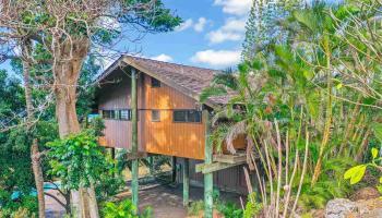 3472  Hookipa Pl South Kihei, Maui Meadows home - photo 3 of 30