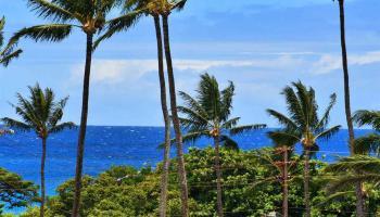 Honokowai East condo # 308, , Hawaii - photo 3 of 26