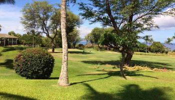 Wailea Fairway Villas condo # W202, Kihei, Hawaii - photo 5 of 15