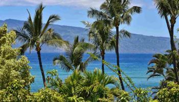 Mahinahina Beach condo # 215, Lahaina, Hawaii - photo 1 of 30