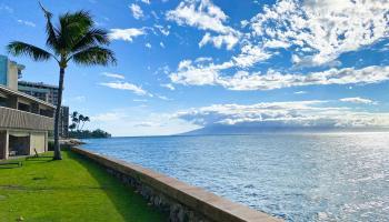 Pohailani Maui condo # 116, Lahaina, Hawaii - photo 3 of 26