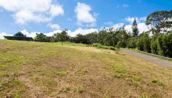 450 Hoomalolo Pl , Hi 96708 vacant land - photo 1 of 11