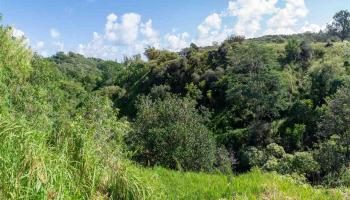 471 B Ulumalu Rd B Haiku, Hi 96708-5317 vacant land - photo 2 of 16