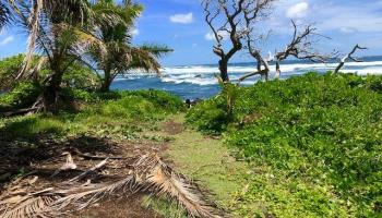 0 Piilani Hwy  Hana, Hi  vacant land - photo 1 of 12