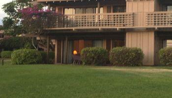 Ke Nani Kai condo # 117, Maunaloa, Hawaii - photo 1 of 11