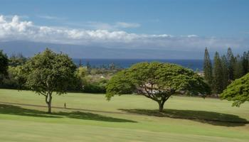 Kapalua Golf Villas condo # 17T7, Lahaina, Hawaii - photo 1 of 25