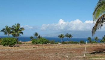 647 Anapuni Loop  Lahaina, Hi 96761 vacant land - photo 5 of 15