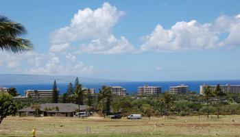 000 Old Mamalahoa Hwy Papaaloa, Hi 96780 vacant land - photo 1 of 9