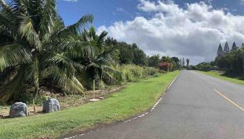 South La`ikeha Pl 2 Wailuku, Hi  vacant land - photo 1 of 9
