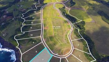 80 Hale Pili Way Haiku, Hi 96708 vacant land - photo 1 of 30