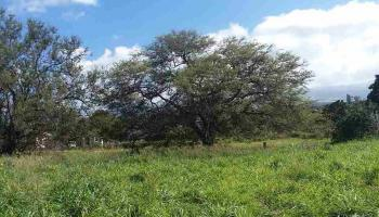 988 Auwaha St A Haiku, Hi  vacant land - photo 1 of 16