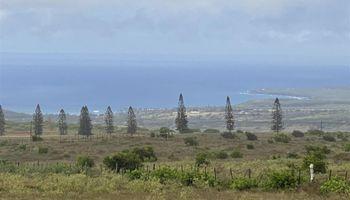 95  Puunana St , Molokai home - photo 2 of 18