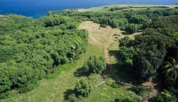 994 N Honokala Rd , Hi 96708 vacant land - photo 0 of 20