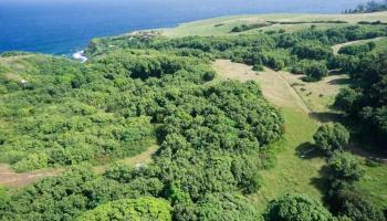 994 N Honokala Rd , Hi 96708 vacant land - photo 3 of 20