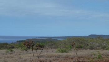 0 Ahiu Rd 137 , Hi 96748 vacant land - photo 2 of 6