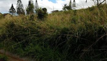 46 Puunana St Lot 543 Maunaloa, Hi  vacant land - photo 1 of 17