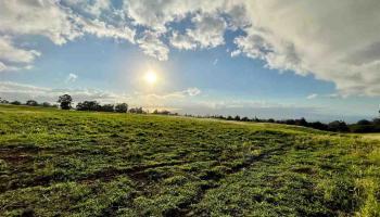 0 Haleakala Hwy  Kula, Hi 96790 vacant land - photo 1 of 16
