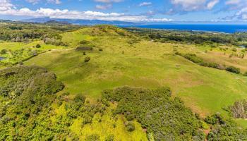 Hinalo Rd  Haiku, Hi 96768 vacant land - photo 1 of 20