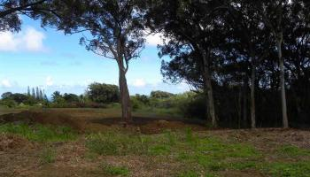 0 S Holokai Rd , Hi 96708 vacant land - photo 4 of 15
