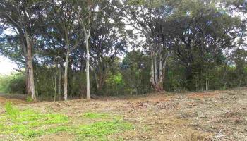0 S Holokai Rd , Hi 96708 vacant land - photo 5 of 15