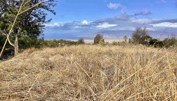 Holopuni Rd  Kula, Hi 96790 vacant land - photo 1 of 6