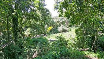 0 Hoolawa Rd , Hi 96708 vacant land - photo 2 of 6