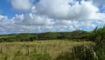 0 Kalua Koi Rd 55 Maunaloa, Hi  vacant land - photo 1 of 3