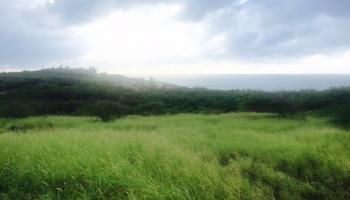 0 Kalua Koi Rd Builder Lot 238 Maunaloa, Hi 96770 vacant land - photo 4 of 18