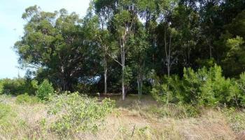 0 Kauhikoa Road  , Hi 96708 vacant land - photo 1 of 6