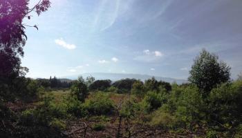 0 Kauhikoa Road  , Hi 96708 vacant land - photo 2 of 6