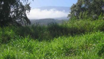 Kaupakalua Rd , Hi 96708 vacant land - photo 0 of 9