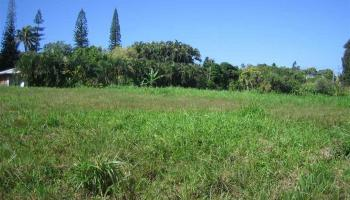Kaupakalua Rd , Hi 96708 vacant land - photo 4 of 9