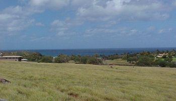 0 Kulawai Pl Lot 230 Maunaloa, Hi 96770 vacant land - photo 2 of 6